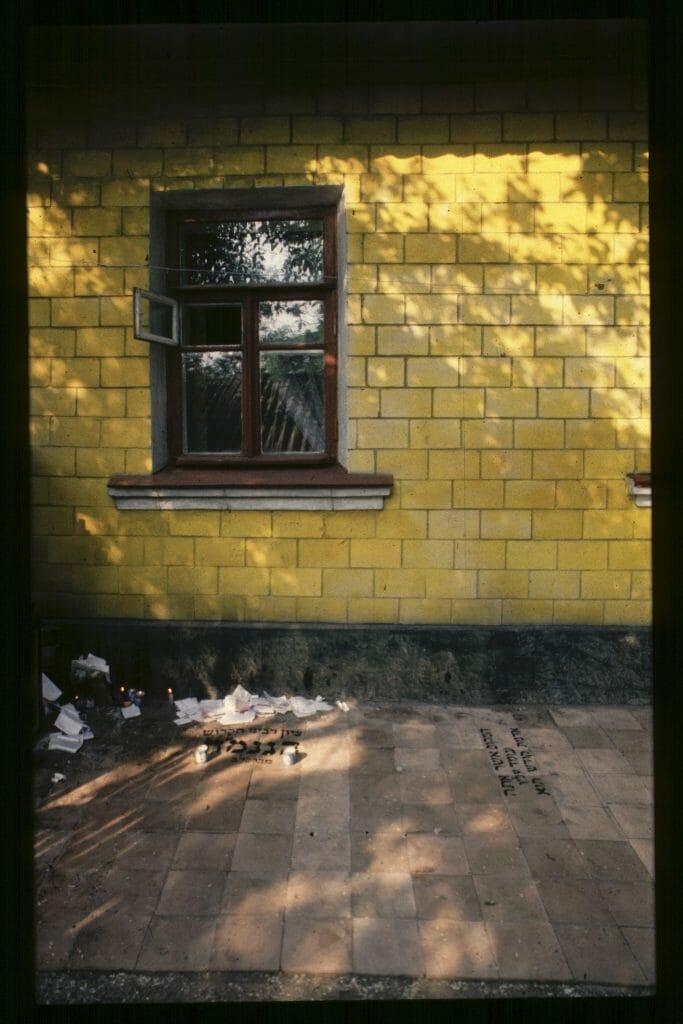 The Tzion under the window