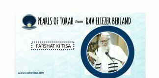 Torah pearls for Ki Tisa: The importance of binding to the true Tzaddik