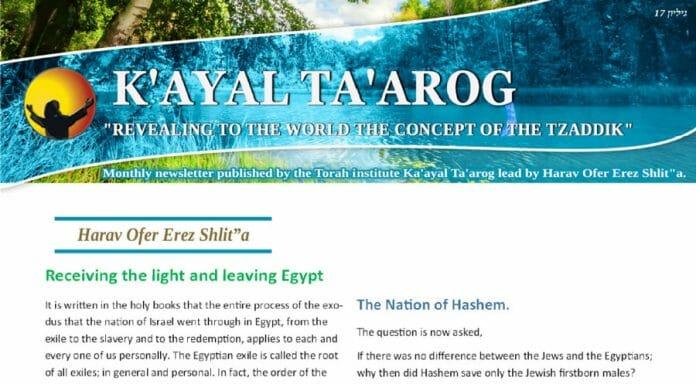 Kaayal-Taarog Ofer Erez