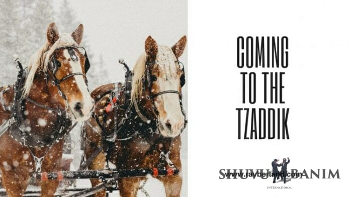 coming-t0-tzaddik