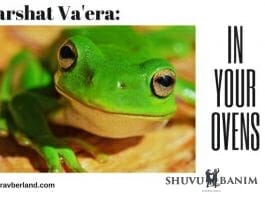 Parshat-vaera-in-your-ovens
