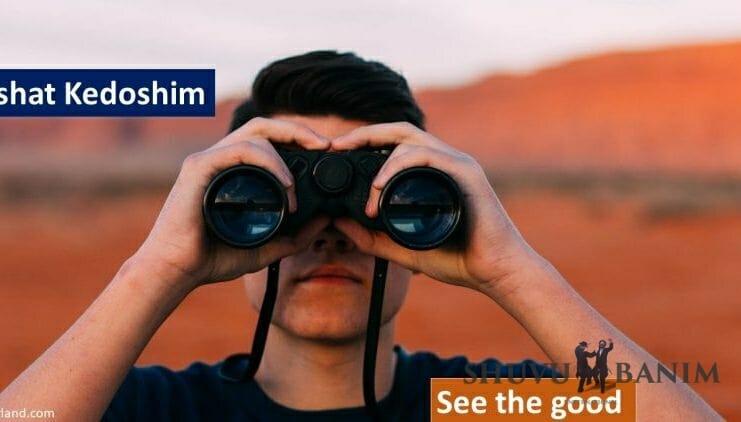 Parshat Kedoshim: see the good