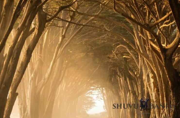 New paths towards Hashem