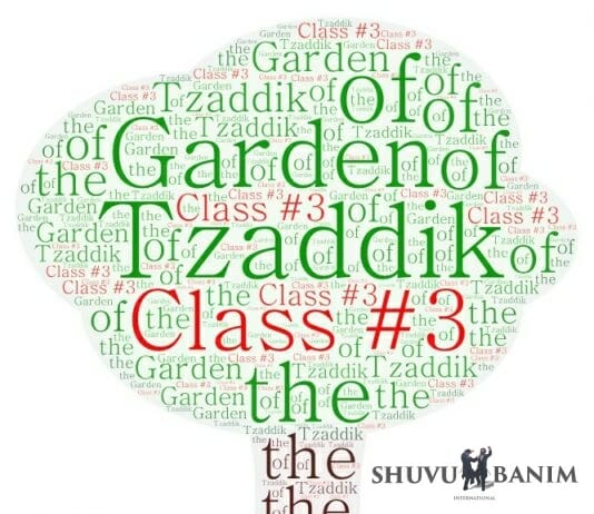 Garden of the Tzaddik