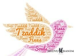 Word cloud picture of a dove, with 'Tzaddik fixes souls'