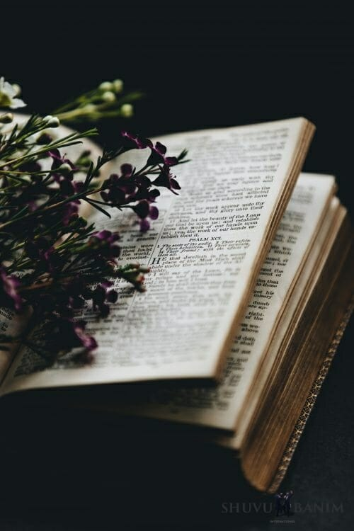 Book of Tehillim