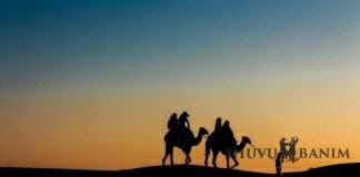 Picture of two people in silhouette riding camels in the desert