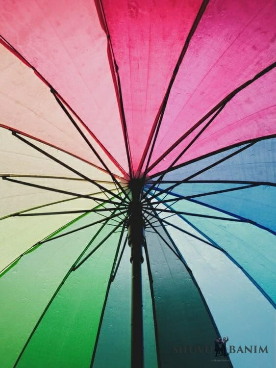 Shield Umbrella